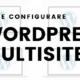 come configurare wordpress multisite 80x80 - Prima di Installare wordpress multisite