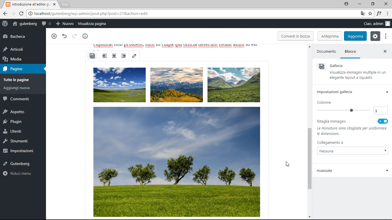 wordpress gutenberg blocco galleria anteprima