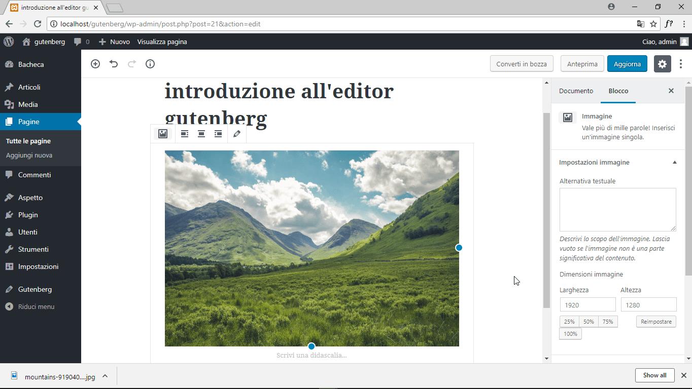 wordpress gutenberg blocco immagine anteprima