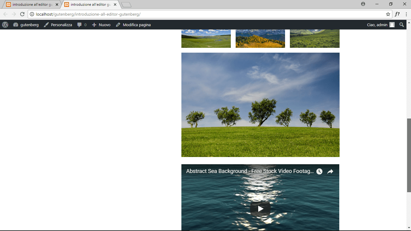 wordpress gutenberg blocco pagina anteprima